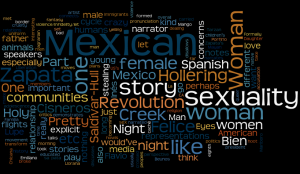 wordle from my notes on Woman Hollering Creek